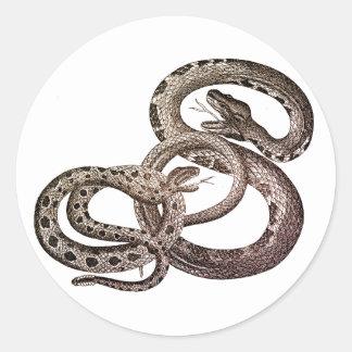 Etiquetas dos cobras