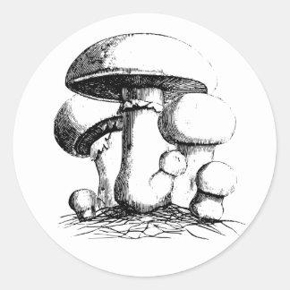 Etiquetas dos cogumelos de prado adesivo