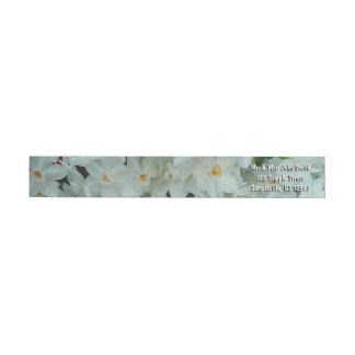 Etiquetas Flores brancas delicadas do narciso de Paperwhite