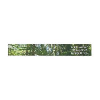 Etiquetas Floresta do verde tropical das palmeiras