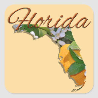 Etiquetas - FLORIDA