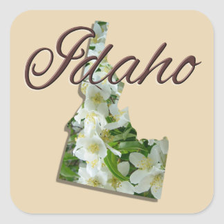 Etiquetas - IDAHO