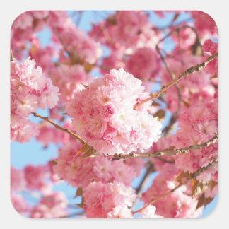 Etiquetas japonesas cor-de-rosa da flor de