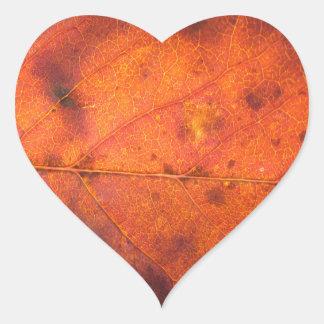 Etiquetas laranja-vermelhos da foto da folha do