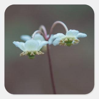Etiquetas listradas do quadrado do Wildflower de Adesivo Quadrado
