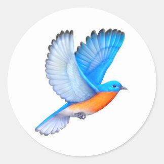 Etiquetas orientais de voo do Bluebird
