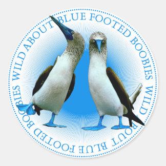 Etiquetas pagadas azul dos pássaros dos Boobies
