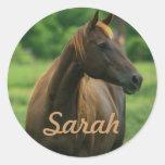 Etiquetas personalizadas do cavalo adesivos redondos