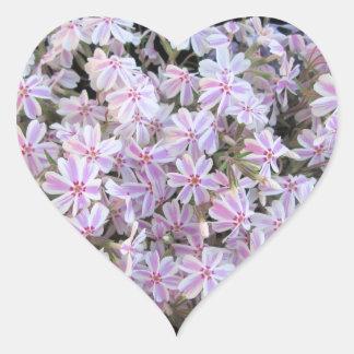 Etiquetas - Phlox Doce-Listrado Adesivo Coração