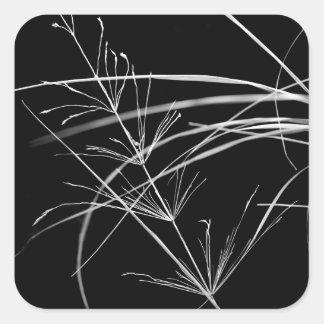 Etiquetas preto e branco abstratas da natureza adesivo quadrado