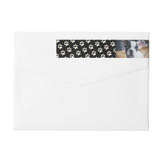 Etiquetas Sua foto do cão com costume do fundo do impressão