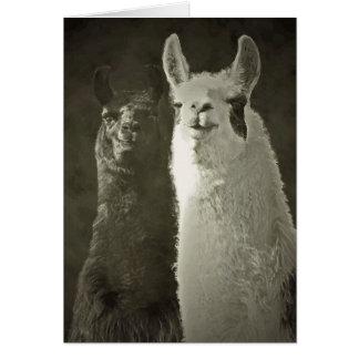 Eu amo alpacas! cartão comemorativo