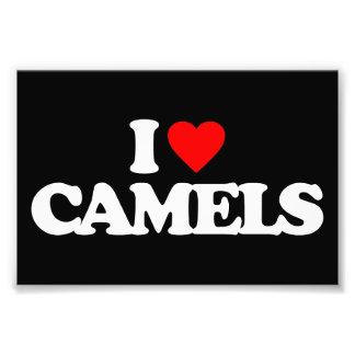 EU AMO CAMELOS ARTES DE FOTOS