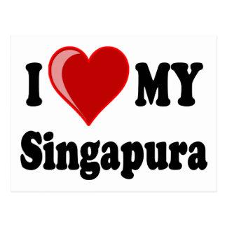 Eu amo coração meu gato de Singapura