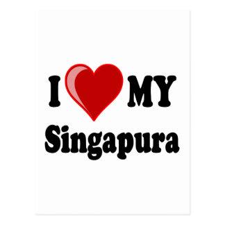 Eu amo (coração) meu gato de Singapura Cartao Postal