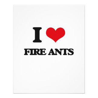 Eu amo formigas de fogo panfleto personalizado