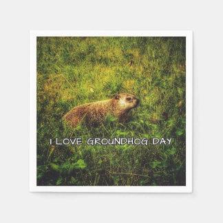 Eu amo guardanapo do dia de Groundhog