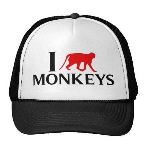 Eu amo macacos bonés
