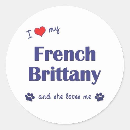 Eu amo meu Brittany francês (o cão fêmea) Adesivos