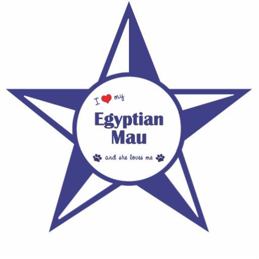 Eu amo meu Mau egípcio (o gato fêmea) Fotoesculturas