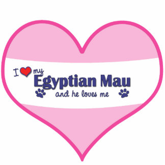 Eu amo meu Mau egípcio (o gato masculino) Escultura De Fotos
