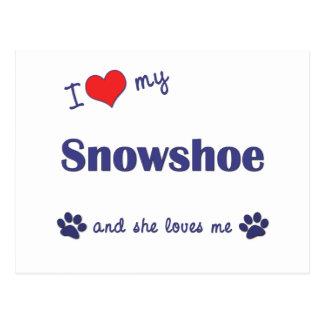 Eu amo meu sapato de neve o gato fêmea cartao postal