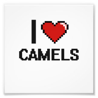 Eu amo o design de Digitas dos camelos Impressão De Foto