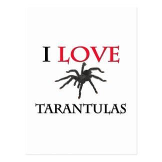 Eu amo Tarantulas Cartão Postal