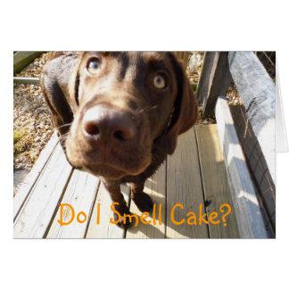 Eu cheiro o bolo? Cartão do laboratório do
