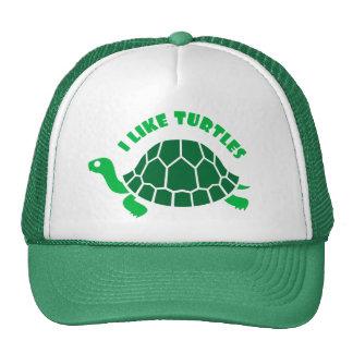 Eu gosto do chapéu das tartarugas boné