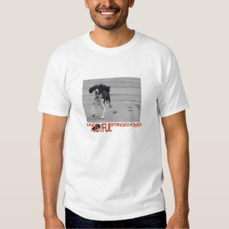 Eu mando o poder alegre de Springer personalizar Tshirts