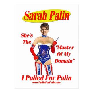 Eu puxei para Palin - mestre de meu cartão do