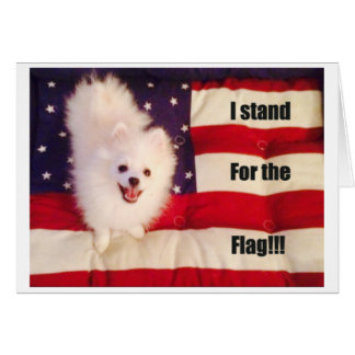 Eu represento o cartão da bandeira