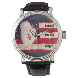 Eu represento o relógio da bandeira