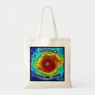 Eu sobrevivi ao bolsa de Irma do furacão
