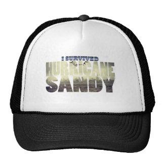 Eu sobrevivi ao furacão Sandy Bones