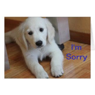 Eu sou cartão pesaroso da desculpa