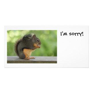 Eu sou esquilo pesaroso da desculpa cartões com fotos