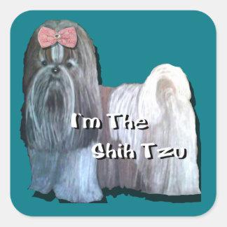 Eu sou o Shih Tzu - etiquetas quadradas