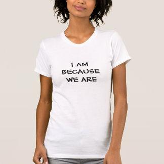 Eu sou porque nós somos - palavras da sabedoria em camiseta