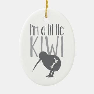 Eu sou um quivi pequeno com o pássaro bonito de ornamento de cerâmica oval