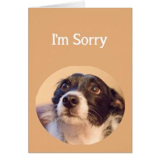 Eu sou vazio arrependido bonito pesaroso do cão cartão comemorativo