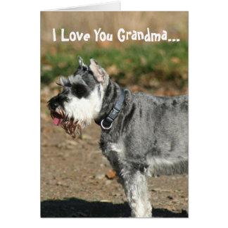 Eu te amo cartão do cão do Schnauzer da avó