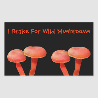 Eu travo para a natureza bonito do cogumelo adesivo retangular