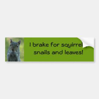 Eu travo para esquilos, caracóis e folhas adesivo para carro