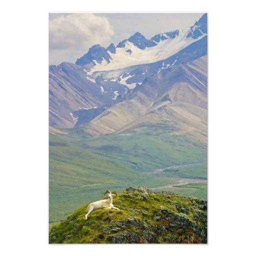 EUA, Alaska, parque nacional de Denali, policromo Impressão Fotográficas