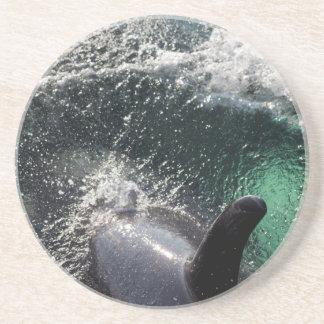 EUA, Alaska, primaveras de Tenakee. Orca Porta Copos De Arenito