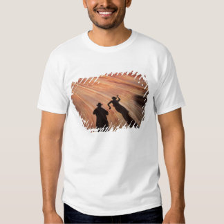 EUA, arizona, escadaria grande Escalante Tshirt