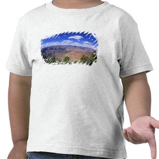EUA, arizona, parque nacional do Grand Canyon, sul Tshirts
