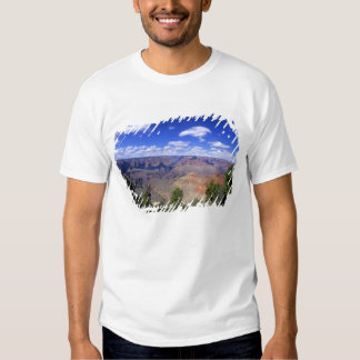 EUA, arizona, parque nacional do Grand Canyon, sul Tshirt